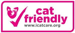cat-friendly-barcelona-veterinaria-del-mar
