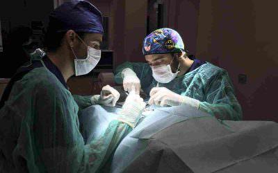 Cirurgia veterinària general