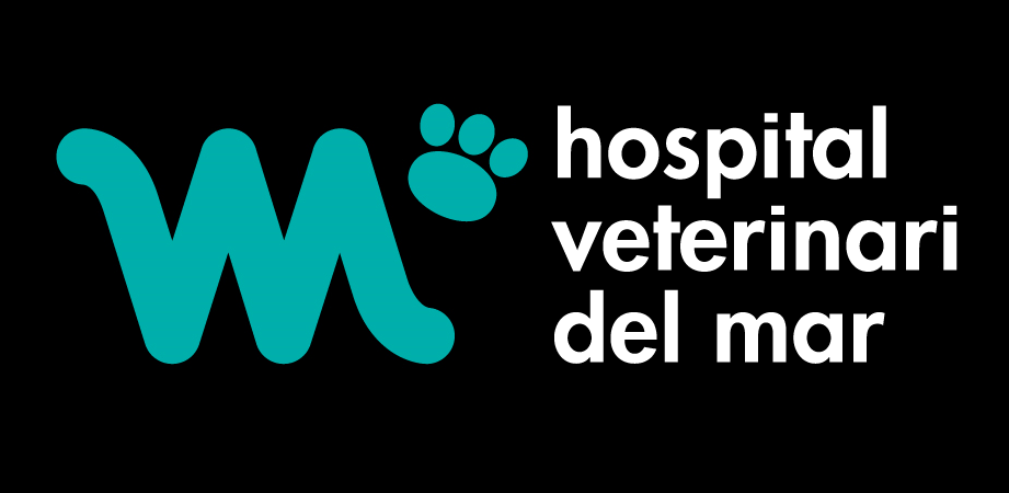 Hospital veterinatrio Barcelona | Urgencias Veterinarias