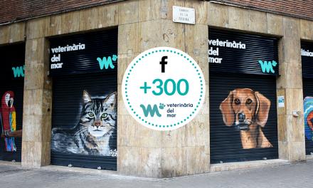 Arribem als 300 seguidors a Facebook! Veterinaris barcelona