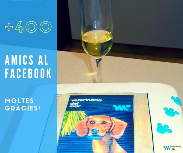 400-seguidors-facebook-veterinaris