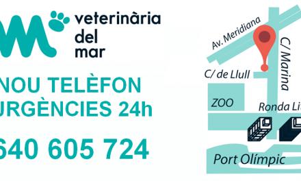 NOU TELÈFON URGÈNCIES 24h Veterinària del Mar