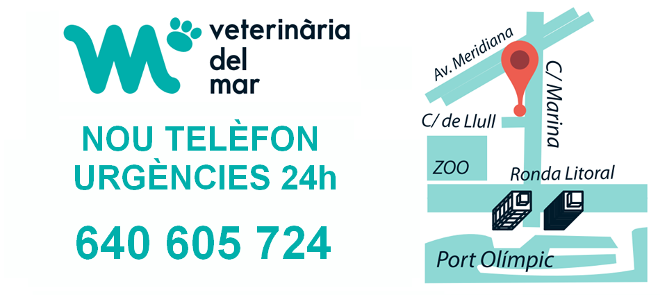 telefon-urgencies-veterinaries-barcelona