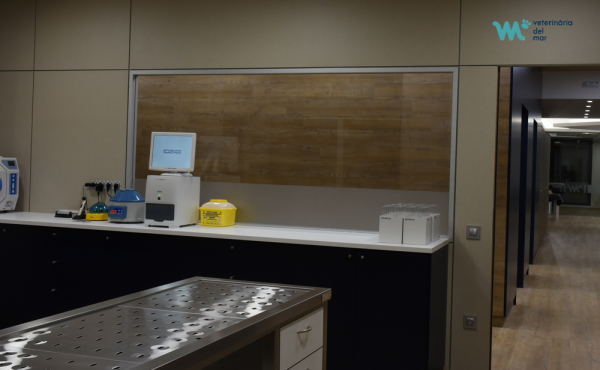 laboratorio-analiticas-veterinaria