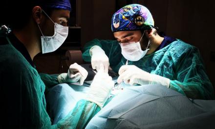 L'esterilització, una intervenció beneficiosa.