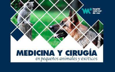 Curso de medicina y cirugía en pequeños animales y exóticos
