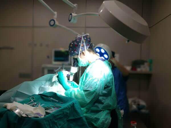 Cirugia microscópica veterinaria