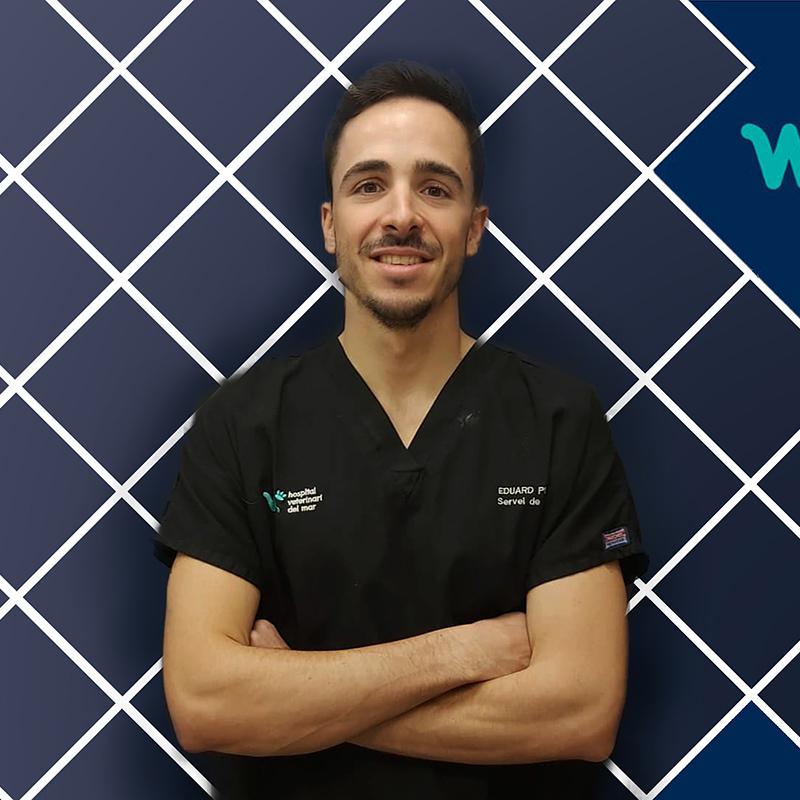 Traumatología Veterinaria y Cirugía | Eduard Pujades | Hospital Veterinario del Mar