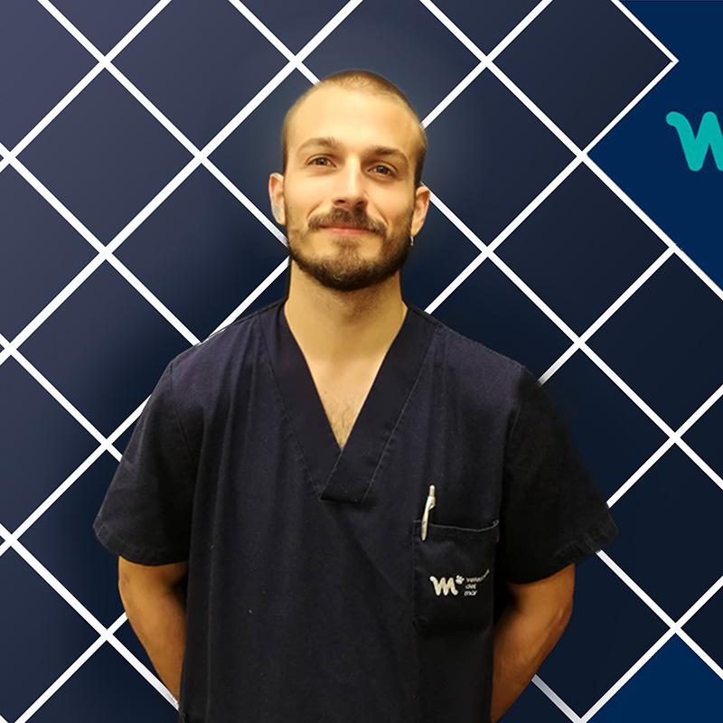 Veterinario Diagnóstico por la imagen | Gonzalo Sanz | Hospital Veterinario del Mar