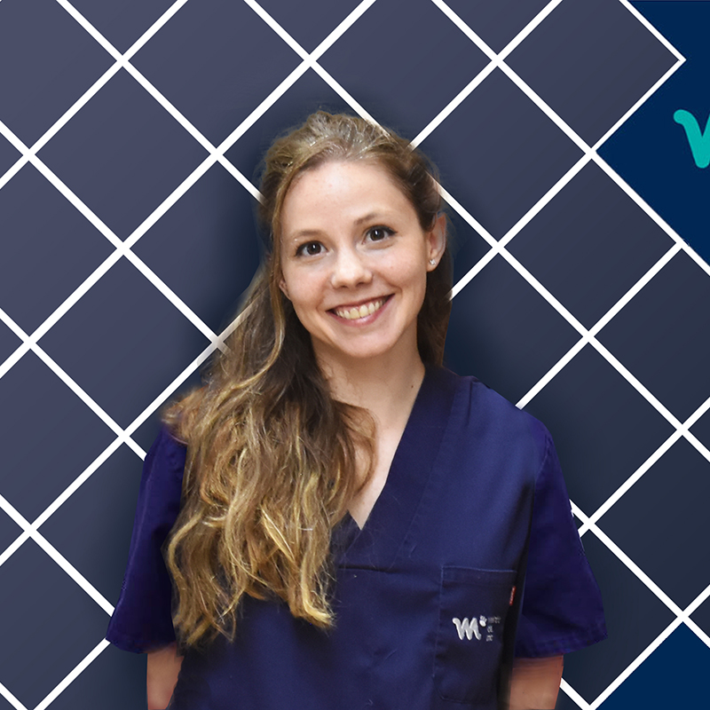 Veterinario Medicina Interna y Neurologóa | Laura di Filippo | HV del Mar