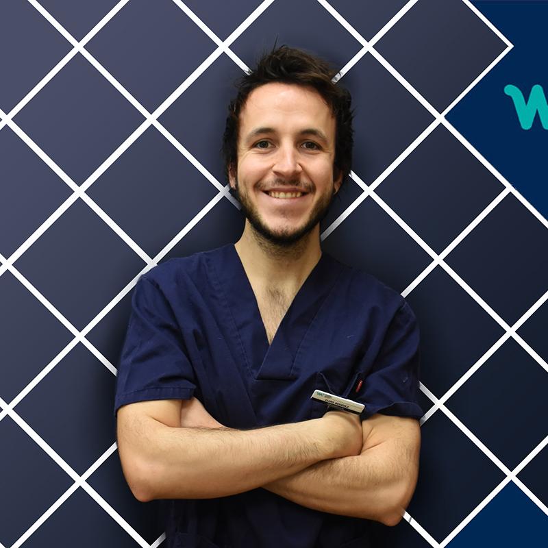 Veterinary Oncology and Internal Medicine | Lluís Benítez | HV del Mar
