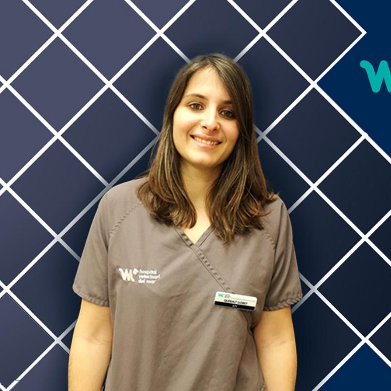 Recepción Veterinaria | Queralt Llobet | Hospital Veterinario del Mar