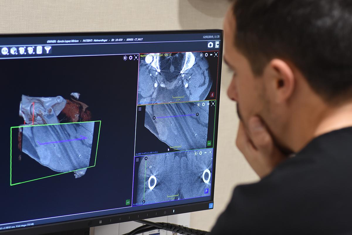 Radiología y ecografía veterinaria Barcelona | HV del Mar