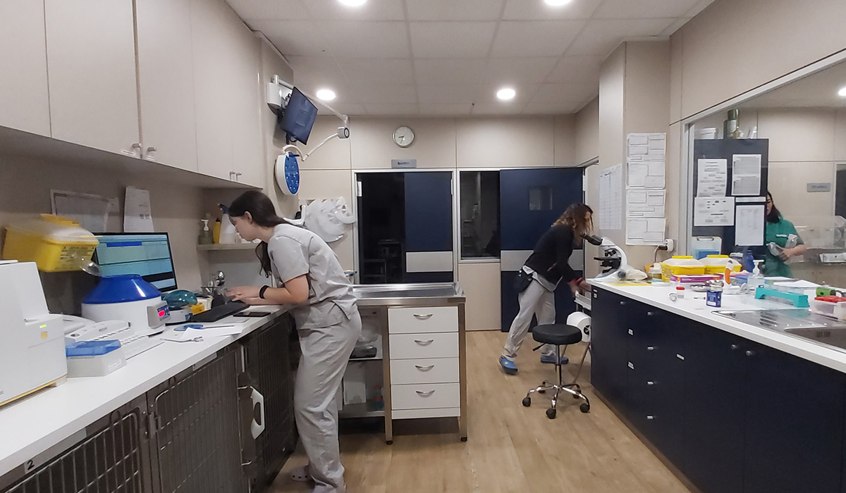 Hospital Veterinario del Mar | Veterinary Analyses Laboratory
