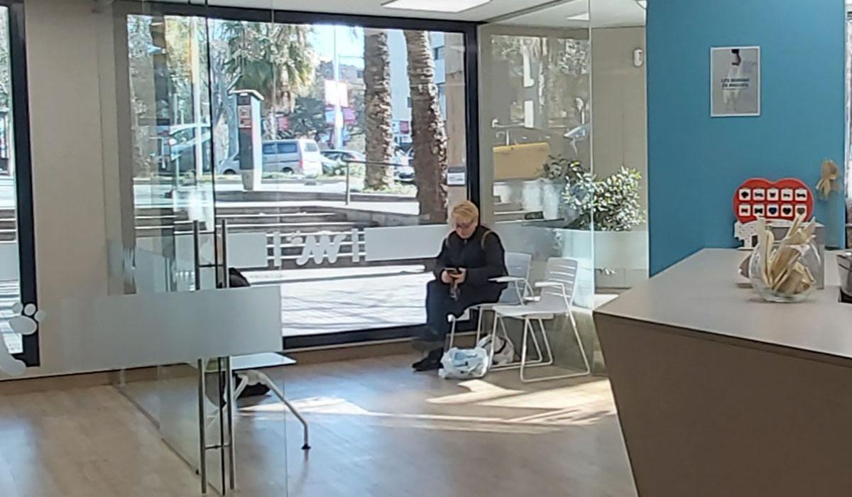 Hospital Veterinario del Mar | Waiting Room 1