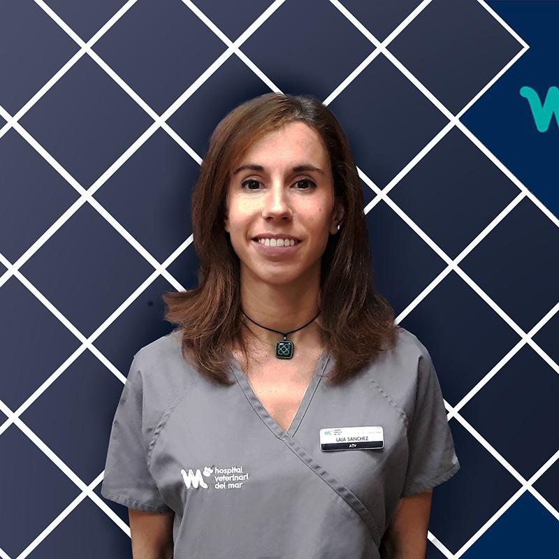 Veterinary Transference Service | Laia Sánchez | HV del Mar