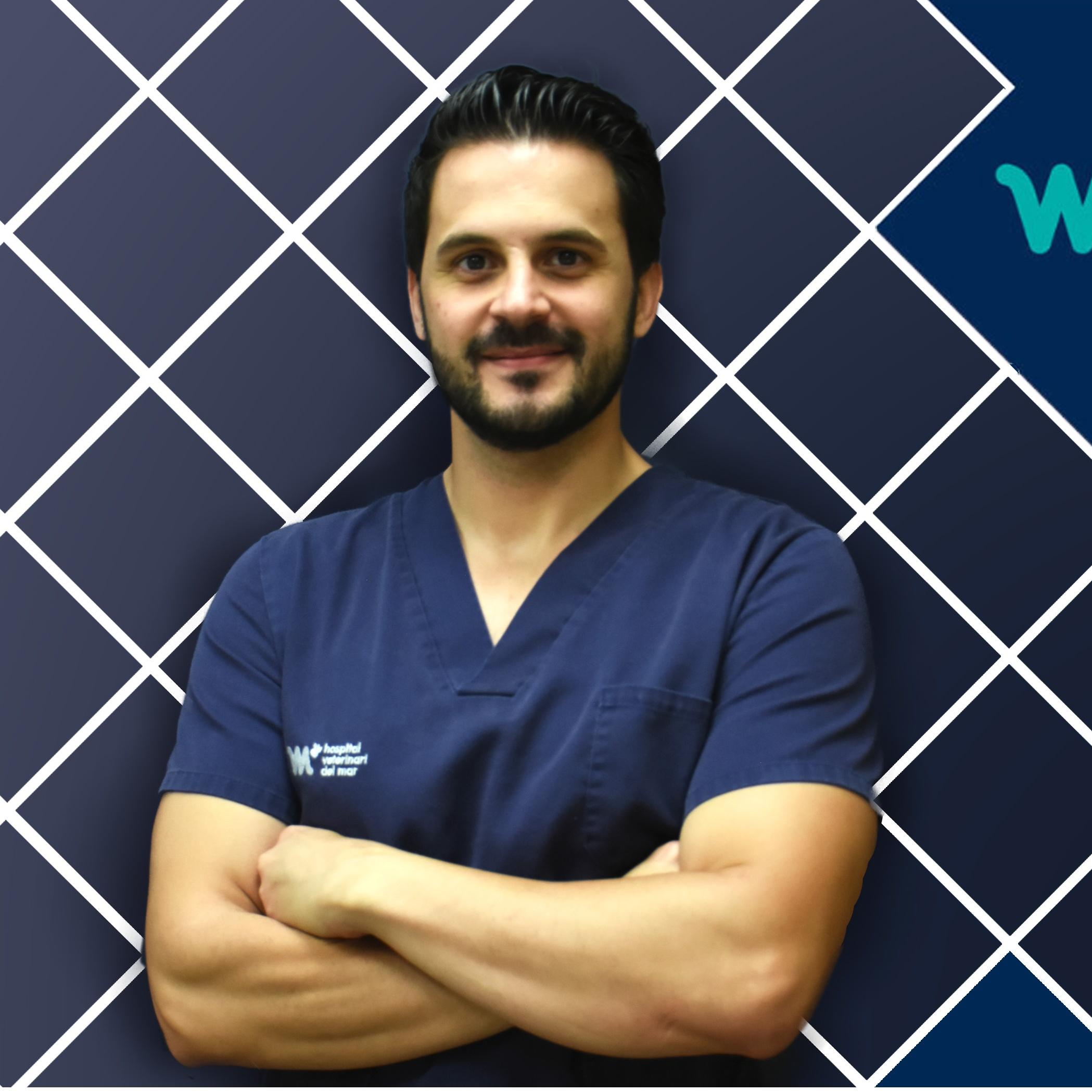 Cirugía Veterinaria | Elvira Deffontis | Hospital Veterinario del Mar