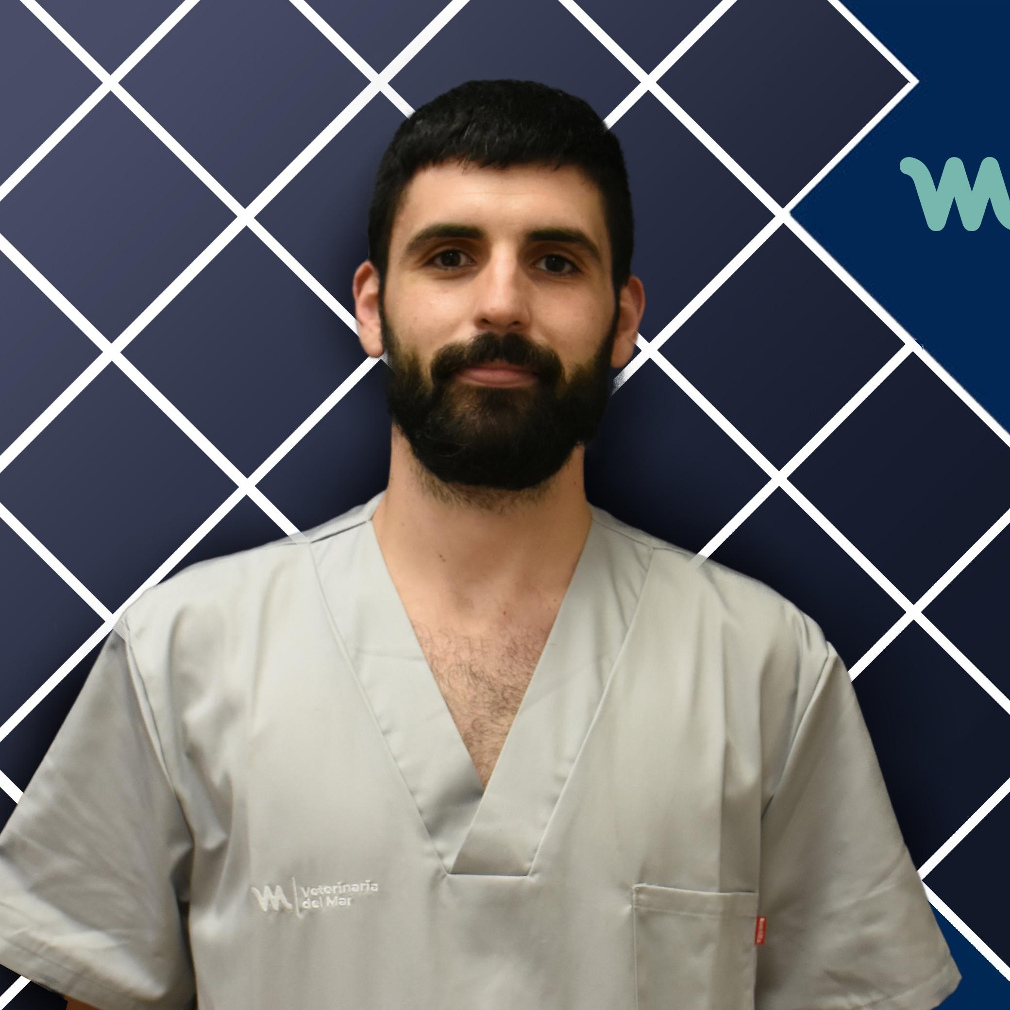 Veterinary UCI | Míriam García | Hospital Veterinario del Mar